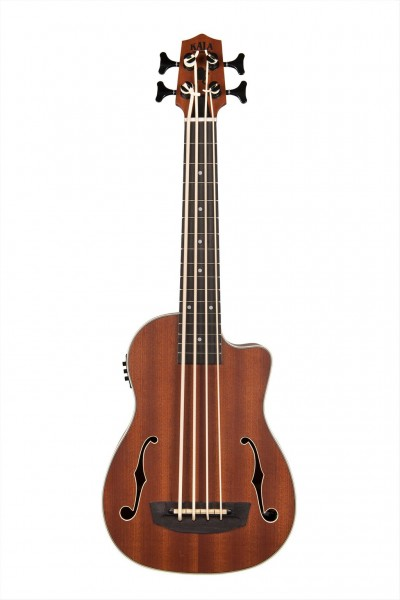 Journeyman Acoustic-Electric UBass